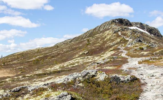 национальный парк Rondane в Норвегии