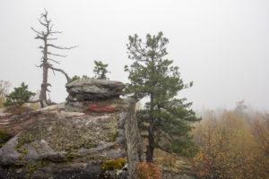 Каменный город осенью